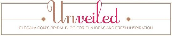 Unveiled wedding blog logo